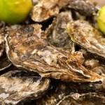 「海のミルク」とも言われる牡蠣。亜鉛・タウリン・グリコーゲン・鉄分など栄養満点!
