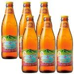パッションフルーツ、オレンジ、グアバをミックスしたフレーバーがさわやかな飲み心地。