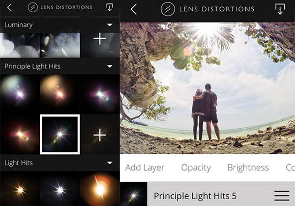 Principle Light Hits 5