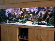 Дизайн аквариума 2