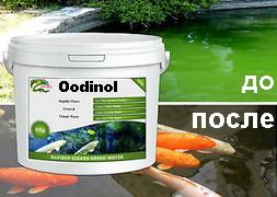 Лекарство для прудов водоемов