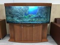 presnovodnyy-akvarium (3.9)