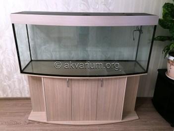 presnovodnyy-akvarium (4.1)