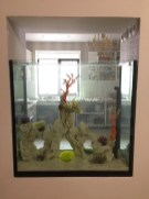 Устанавливаем декорации в аквариум