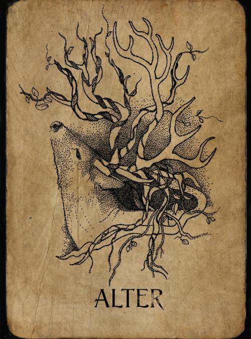 Alter Phantom by Anna Campbell Art