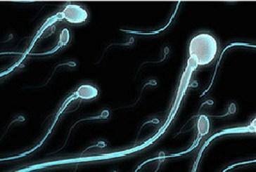 علماء يقترحون استخدام الموجات فوق الصوتية لمنع الحمل