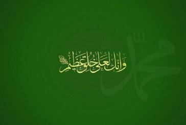الحسيني: نقول للمسلمين الجدد في زمان الادعاء والتشويه والانحراف، هذه أخلاق محمد العربي