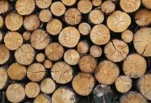 إستخدام الخشب