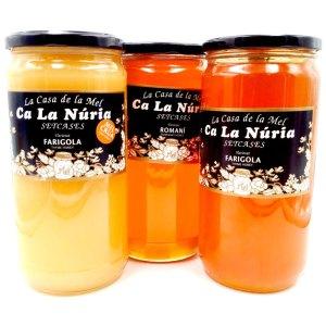 Miel frasco cristal 1kg. Ca la Nuria