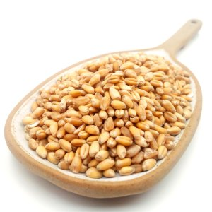 Trigo en grano natural ECO