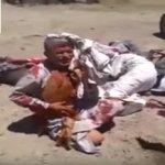 بالفيديو: ميليشيات الحشد الشعبي الشيعية تقتل 5 عراقيين بدم بارد بينهم مسن