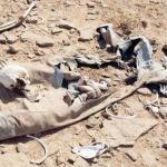 العثور على جثة مواطن متحللة في صحراء السليل