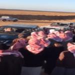 """شاهد: """"الفقع""""يسحر السعوديين في محمية حرة الحرة"""