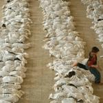 سوريا: مجزرة الكيماوي في الغوطة هذا ما انكشف بعد 3 سنوات- فيديو