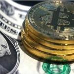 """العملة """"المجنونة"""" تحقق رقما قياسيا جديدا خلال 12 ساعة فقط"""