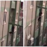 شاهد .. لحظة سقوط  امرأة  من الطابق السابع في مصر