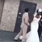 """شاهد.. كيف تسببت """"حمامة"""" في إحراج عروسة خلال حفل زفافها!"""