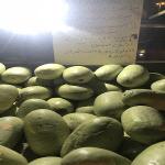 بائع يلجأ لطريقة مختلفة لبيع البطيخ في المدينة.. شاهد ماذا كتب على لافتة لجذب الزبائن!