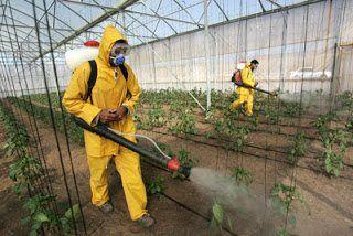 شركة رش مبيدات حشرية بالخرج شركة رش مبيدات حشرية بالخرج 0501515313 Spray pesticides Kharj