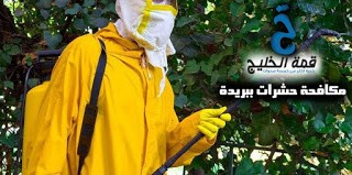 شركة مكافحة حشرات ببريدة 0533942974