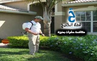 شركة مكافحة حشرات بعنيزة 0533942974