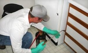 شركة رش مبيدات ببريدة شركة رش مبيدات ببريدة 0533942974 Pesticide spraying company in Buraidah