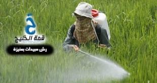 شركات رش مبيدات بعنيزة