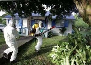 شركة رش مبيدات بعنيزة شركة رش مبيدات بعنيزة 0533942974 Pesticide spraying company in Onaizah