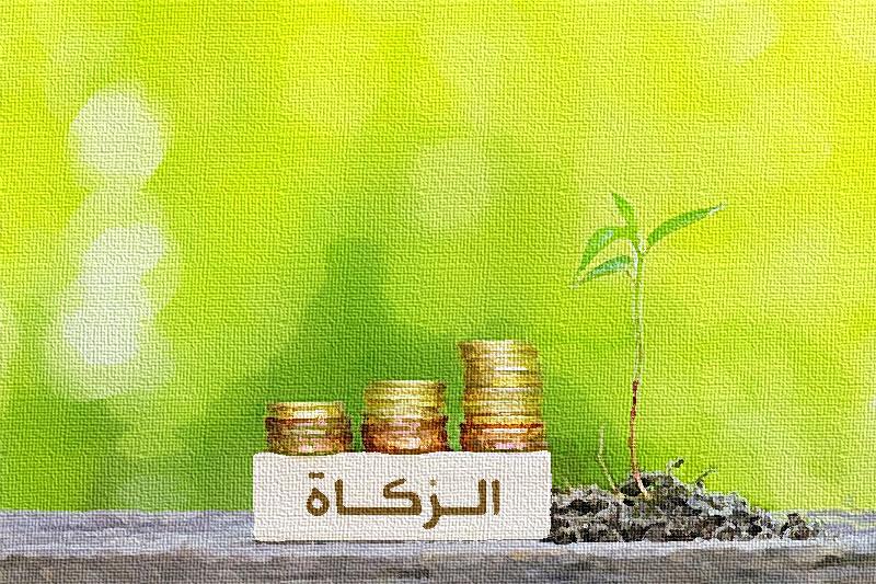 الزكاة من ركائز الاقتصاد الإسلامي