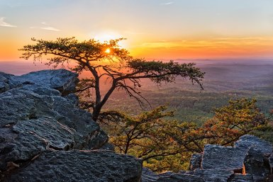 Whether you're a native of Alabama or a tourist, there are several Alabama fun facts that are quite interesting about this southern state! #funfacts #fun #facts #alabama #travel #info #destination