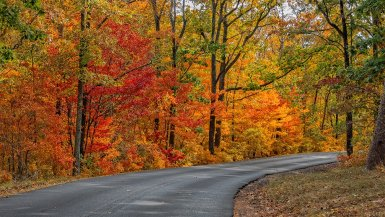 Autumn hasn't fully arrived until the beautiful Alabama fall foliage peaks. Then it's time for the state's best hikes and drives of the year! #alabama #fall #hikes #drives #foliage