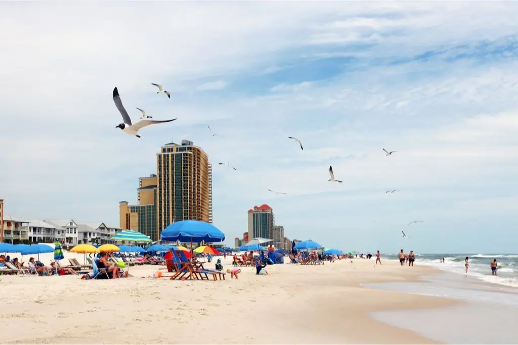 Looking for ideas on how to spend your spring break in Alabama? This guide includes everything you will need to plan the perfect spring trip! #spring #break #alabama #beach #college #family #nightlife #mobile #concert #vacation