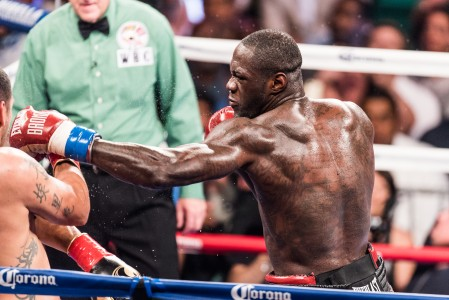 Deontay Wilder's success in Alabama could pave the way for more combat sports here. (Nik Layman/Alabama NewsCenter)