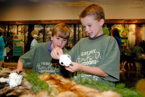 Children learn about animal skins and skeletons at NaturePlex. (Billy Brown/Alabama NewsCenter)