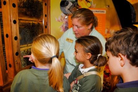 Children learn about beehives at NaturePlex. (Billy Brown/Alabama NewsCenter)