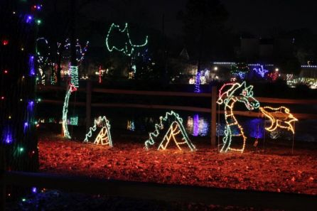 The annual Zoolight Safari is Dec. 15-23 and 26-31 from 5 p.m. until 9 p.m. at the Birmingham Zoo. (Contributed)