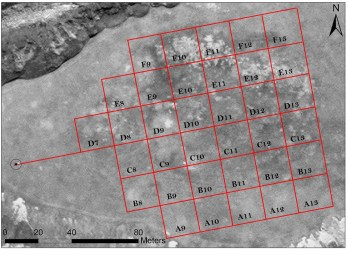 The site and magnetometer survey grid, aligned to magnetic north. (image/map: Chase Childs)