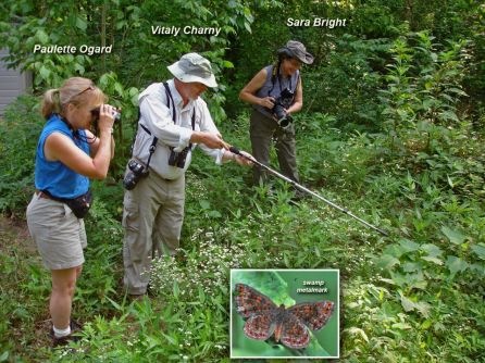 Butterfly specialists at work (Contributed)
