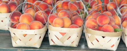 Chilton County Peach Festival. (Karim Shamsi-Basha/Alabama NewsCenter)