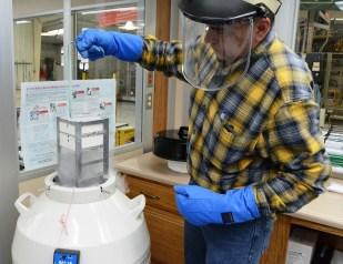 Dr. Scott Gravlee at work in the lab his father founded. (Karim Shamsi-Basha/Alabama NewsCenter)