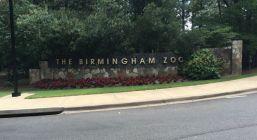 The Birmingham Zoo (Brittany Faush-Johnson/Alabama NewsCenter)