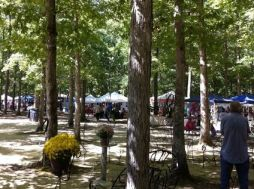 The under-the-trees event captivates attendees. (Contributed)