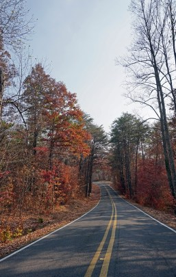 Canyon Rim Drive. (Erin Harney/Alabama NewsCenter)