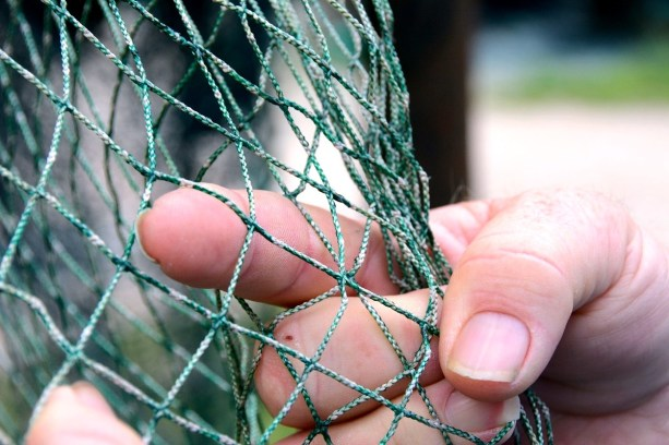 Steve Sprinkle points out the detail in one of his nets, the mark of a craft that has been in his family for generations. (Karim Shamsi-Basha/Alabama NewsCenter)