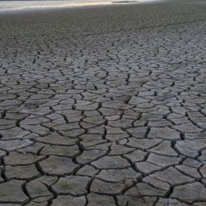 Lake Purdy shows the impact of one of Alabama's droughts. (Wynter Byrd/Alabama NewsCenter)
