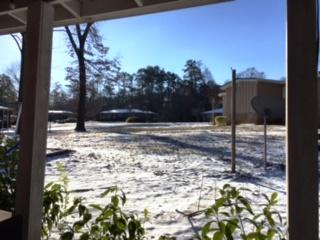Saturday morning finds Hueytown under a blanket of snow. (Joan Burleson/Alabama NewsCenter)