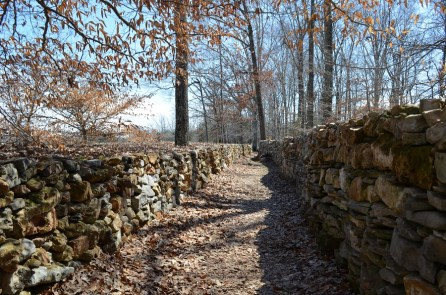 This section of the wall represents the straight shot journey to the Indian lands. (Anne Kristoff / Alabama NewsCenter)