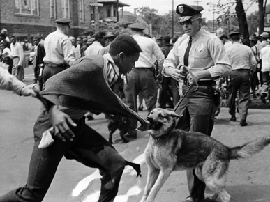 Police K-9 units were deployed to manage crowds of protesters during the Birmingham campaign of the civil rights movement in May 1963. Such actions brought massive negative publicity to the city in the national media. (From Encyclopedia of Alabama, Courtesy of The Birmingham News. All rights reserved. Used with permission.)