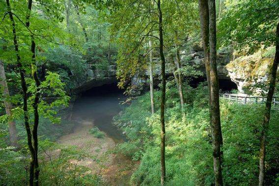 """Russell Cave has a mapped length of 7.2 miles, only a fraction of which are buried under park lands,"" states the NPS. (NPS)"