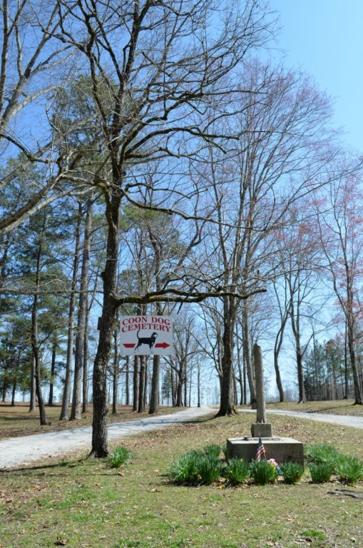 The entrance to the Coon Dog Cemetery. (Anne Kristoff / Alabama NewsCenter)